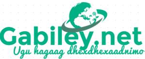 gabileylogo1